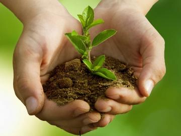Réussir dans la transition écologique