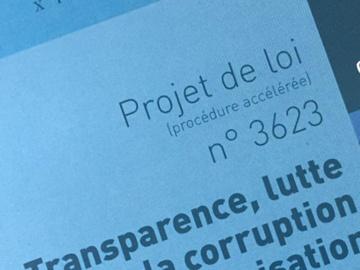 Loi Sapin II – Les entreprises françaises face aux nouveaux défis de la lutte contre la corruption
