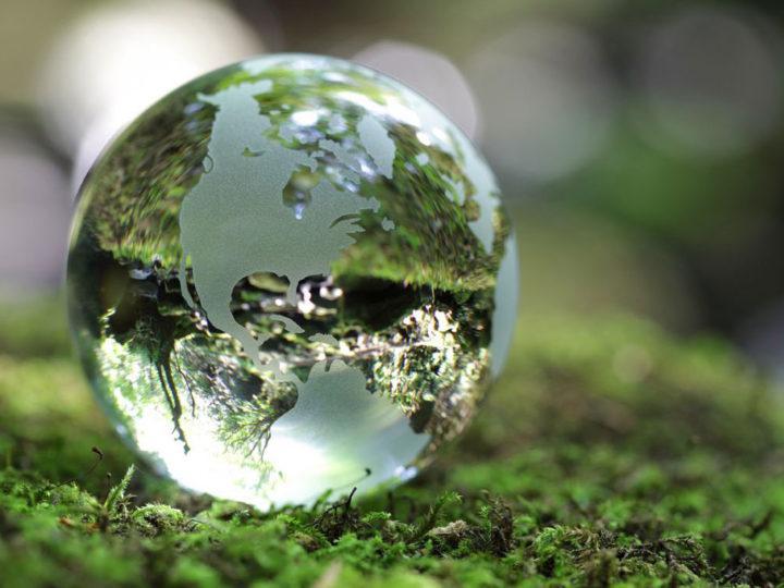 Entreprendre dans la transition écologique